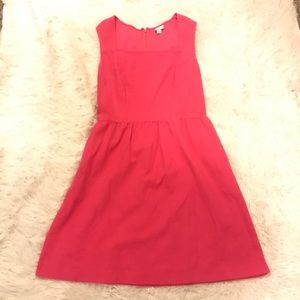 Pink Fit n Flare Dress